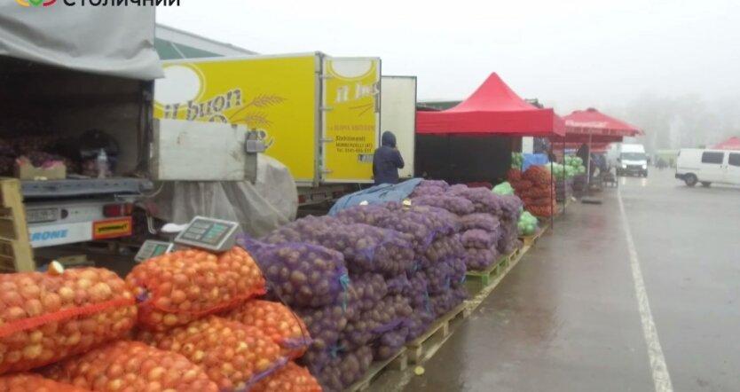 Картофель в Украине, урожай овощей в 2021 году, цены на картофель