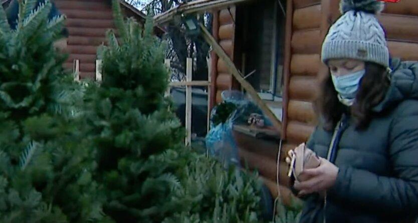 Погода в Украине в декабре, диденко, прогноз погоды