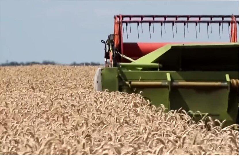 Цены на сырье в мире, Мировая экономика, Рост цен на зерно, Производство стали