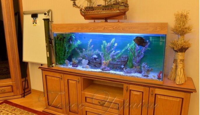 холодницкий аквариум