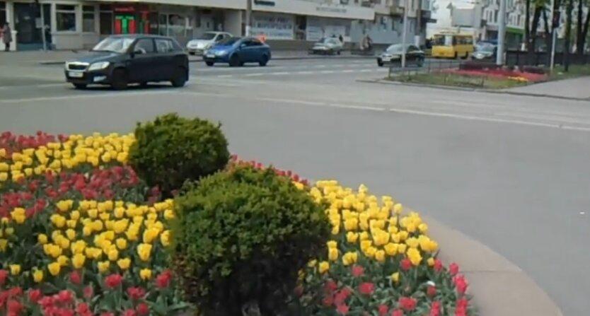 Весна в Киеве, погода в Украине, прогноз погоды