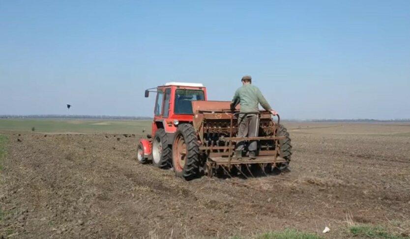 Кукурузы больше, сахарной свеклы меньше: в Кабмине отчитались о ходе посевной в Украине