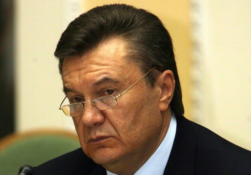 Янукович сделал зампредом миграционной службы автора закона о биометрических паспортах