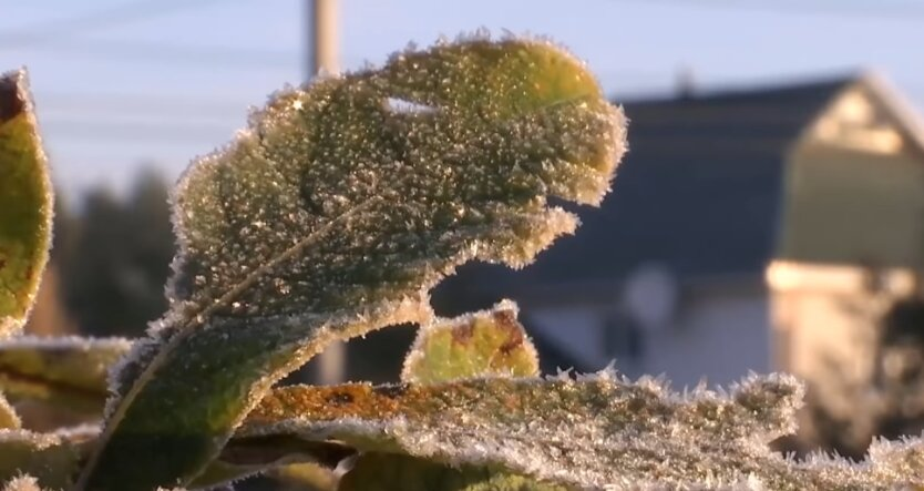 Похолодание, заморозки, погода