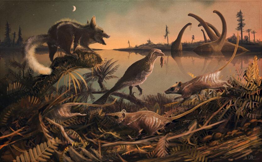 динозавры, млекопитающие, ранняя Земля
