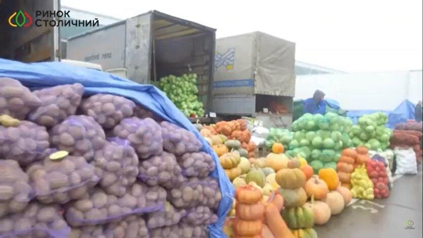 картофель, продажа, Украина, Нидерланды, утилизация