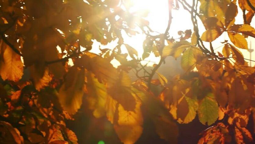 Бабье лето в Украине,Погода на 15 октября,Осень в Украине,Погода на четверг