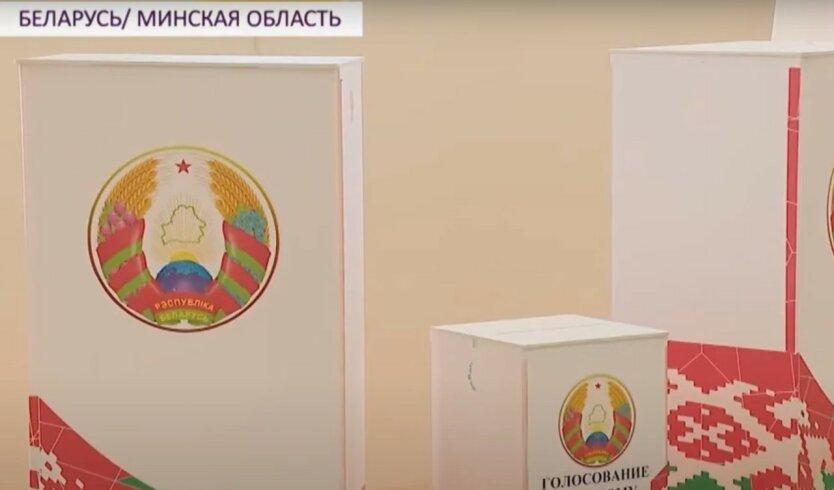 В Беларуси досрочно проголосовала почти половина избирателей