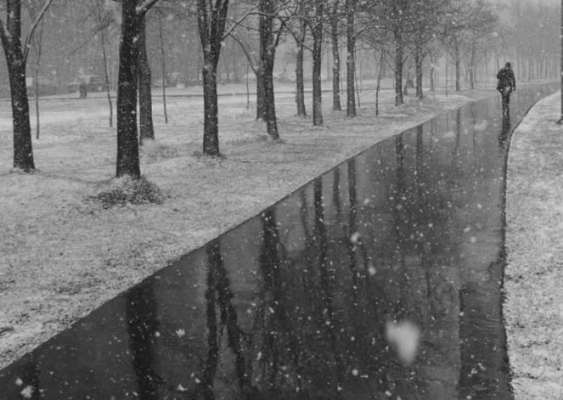 dozhd_sneg