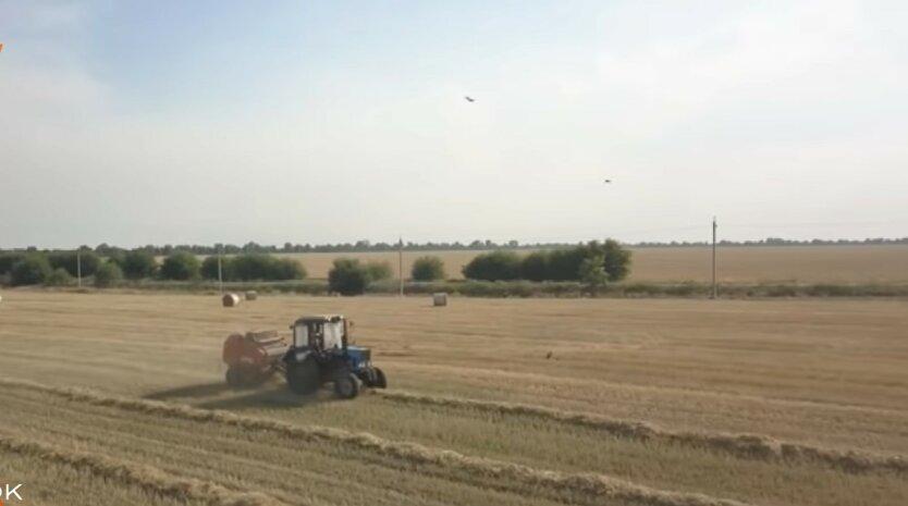 Земля в Украине, сколько стоит продать пай, рынок земли в Украине
