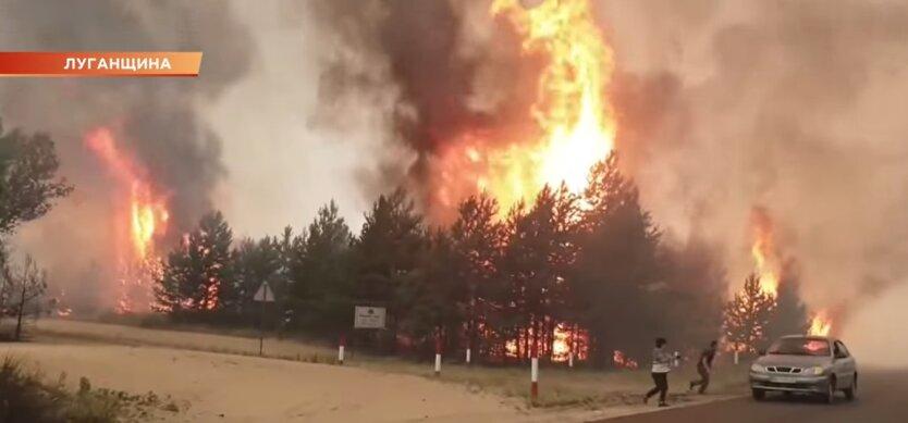 Пожары в Луганской и Харьковской областях, причина возгорани, Владимир Зеленский