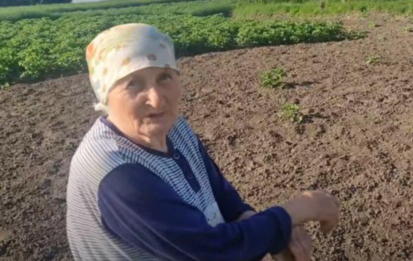Украинцам показали новые требования к пенсионному стажу