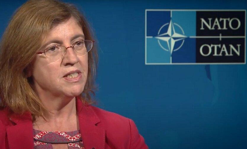 НАТО может помочь Украине в борьбе с коронавирусом