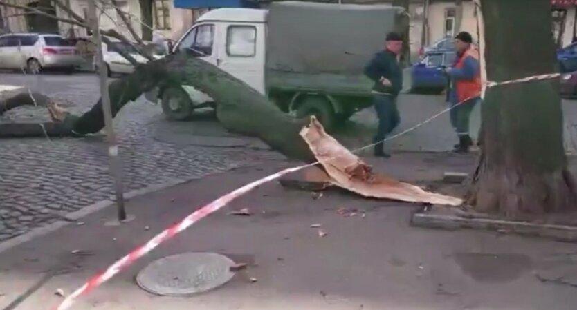 циклон Юлия-Одесса