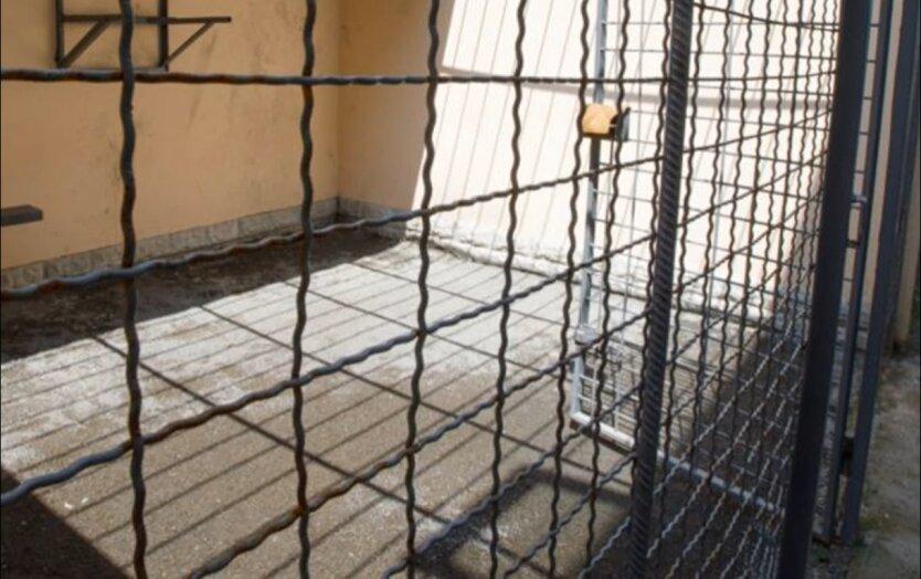 Пытки в тюрьме, Bellingcat, россияны