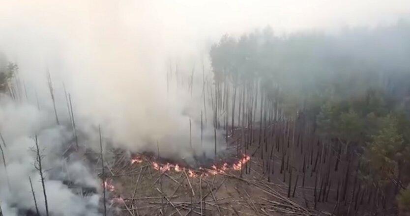 Лесные пожары в Украине, ГСЧС Украины, Пожарная опасность в Украине