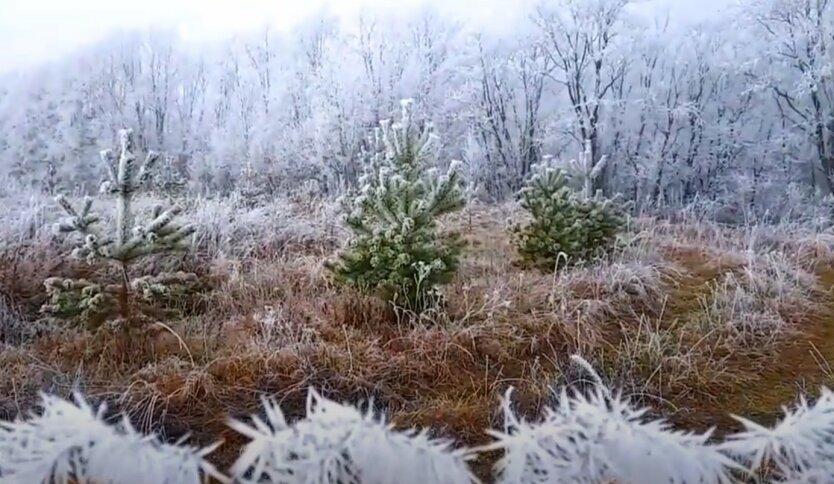 Украинцев предупредили о резком похолодании в ближайшее время