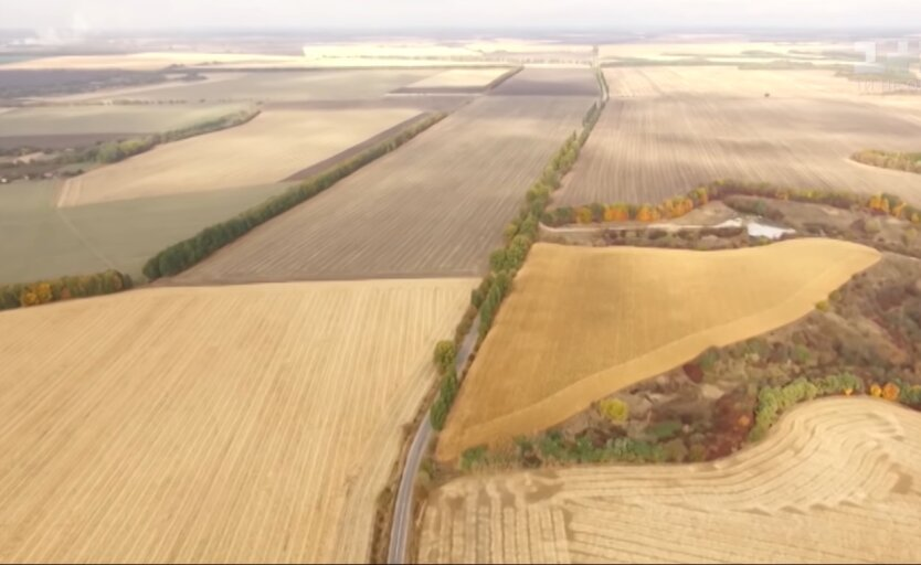 Земля в Украине, гектары, Кабмин
