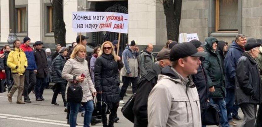 опу протесты