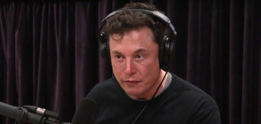 Илон Маск,Роберт Райх,Маск оскорбил чиновника на русском,Tesla,компания SpaceX