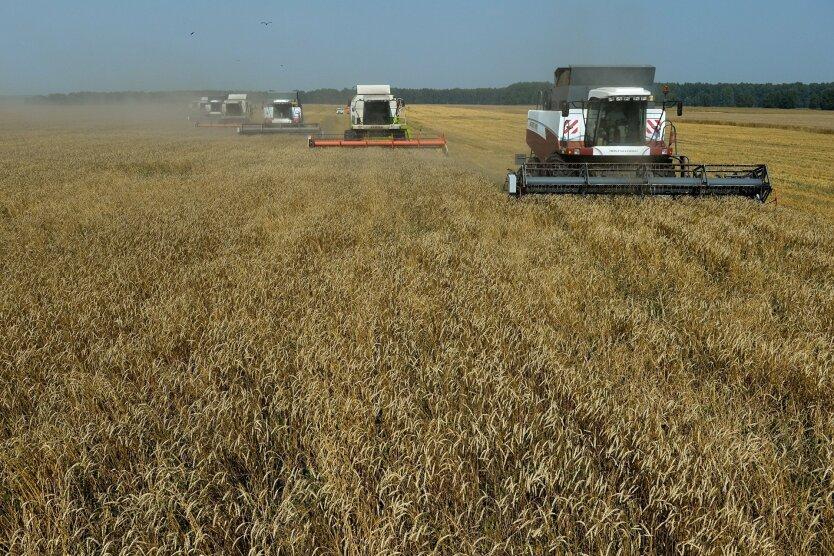Аграрная отрасль Украины