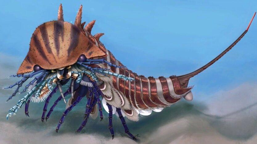 хищник-амфибия