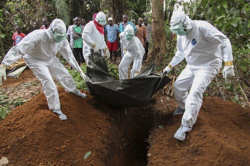 эбола болезнь