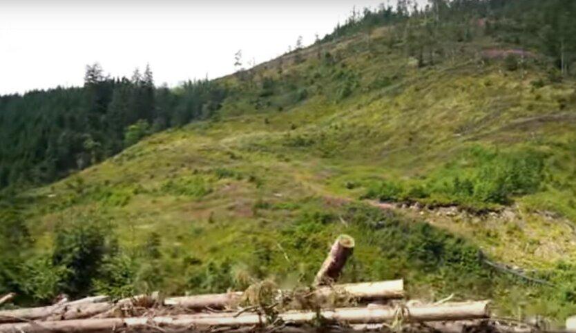 ООН предупредила Украину о грозящей экологической катастрофе