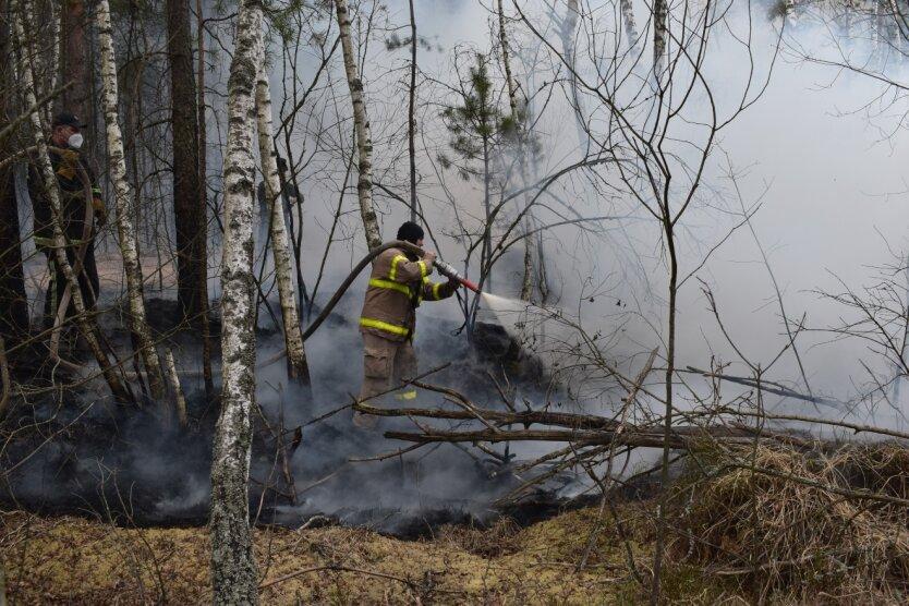 тушение пожаров в Украине