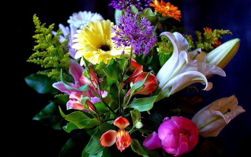 цветы, букет цветов
