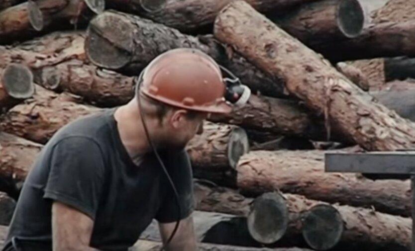 Россия вывезла из Донбасса уголь на миллиарды долларов