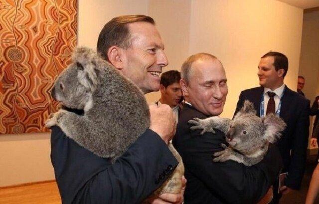 Владимир Путин и коала
