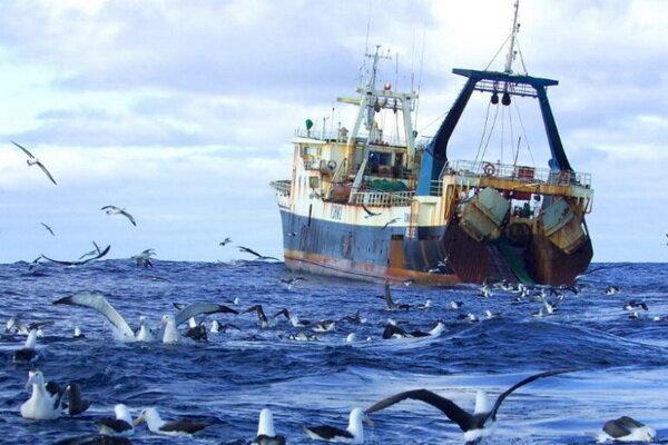рыболовецкое судно рыбаки море чайки