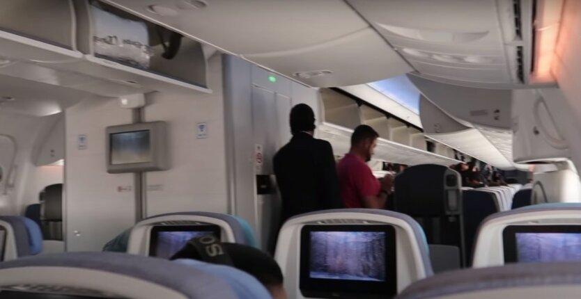 Самолет авиалиний Air Europa,пьяный дебош в самолете,Инцидент на рейсе Air Europa