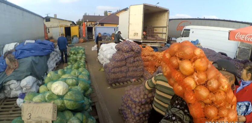 молодая капуста, цены, Украина