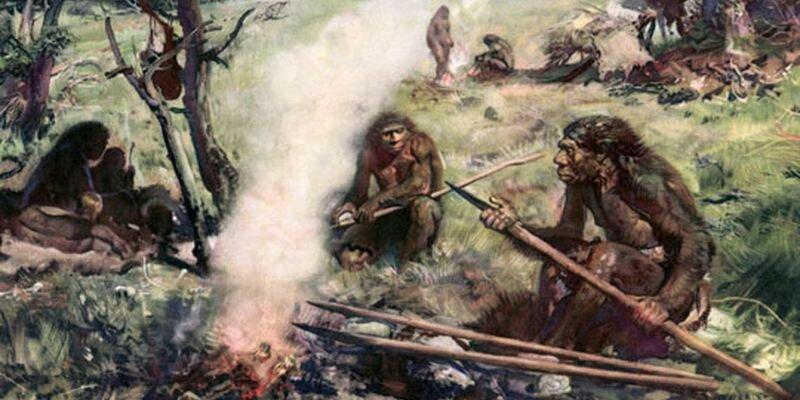 предки человека