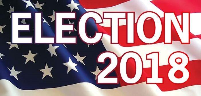 выборы в США 2018