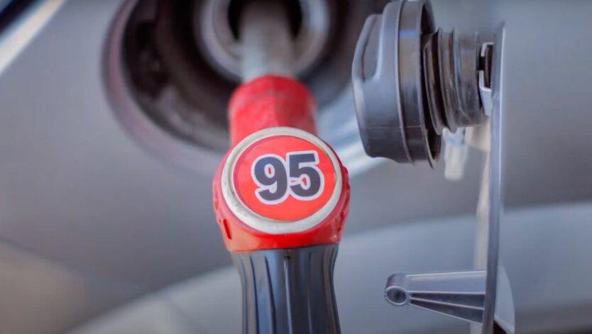 Эксперт объяснил, чем заменят бензин А-95 из Беларуси и как это отразится на ценах АЗС