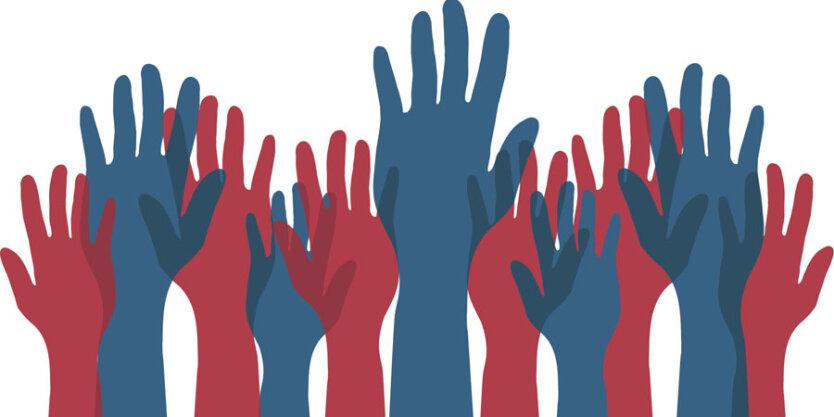 прямая демократия