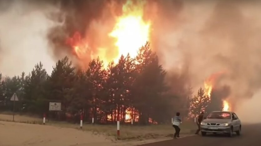 Пожары на Луганщине,Владимир Зеленский,компенсация жертвам пожара в Луганской области