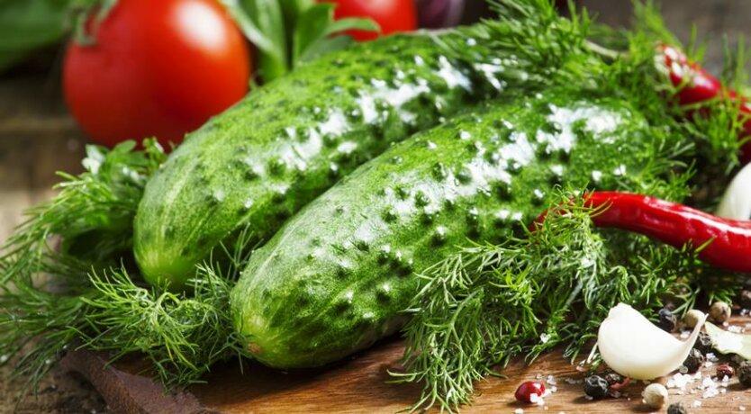 овощи_огурцы