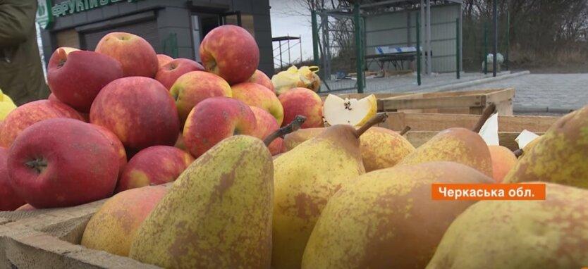 Украина, цены на фрукты, заморозки