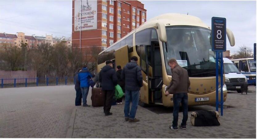Украинские заробитчане,польский бизнес,трудовые мигранты в Польше,сбор клубники в Польше