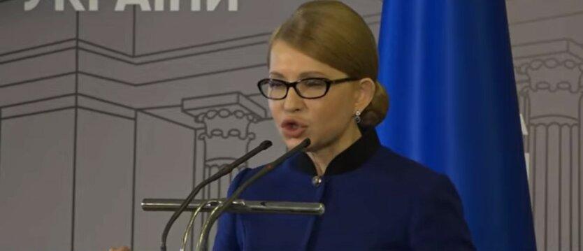 Юлия Тимошенко, Сергей Власенко, миллионные доходы
