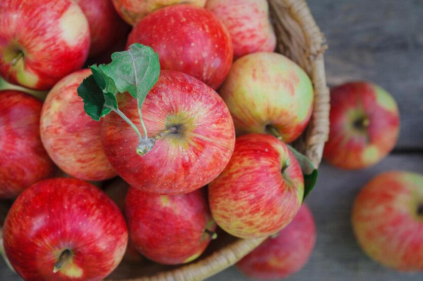 Украина рекордно увеличила импорт самого популярного фрукта
