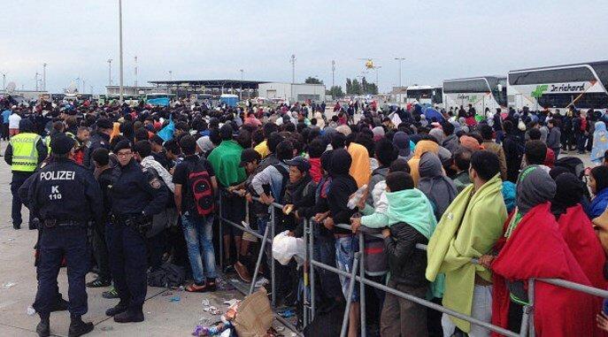 беженцы германия