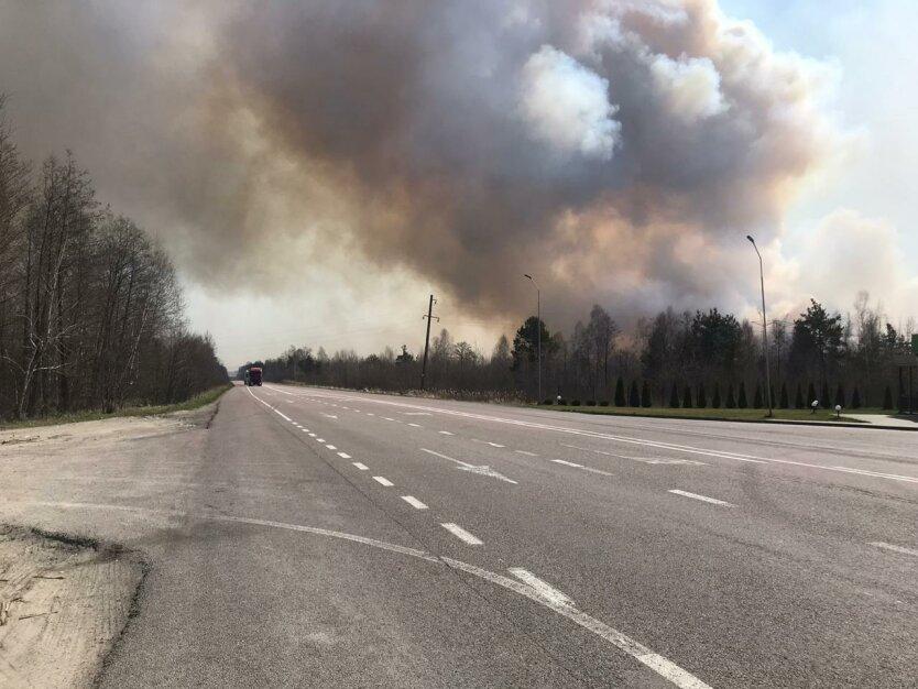 Лесной пожар в Украине в Ровенской области. Фото Юрия Романенко