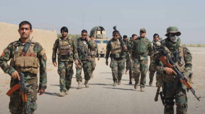 "Бойцы Фронта нацсопротивления Афганистана, ""Талибан"""