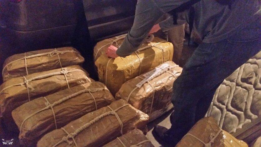 Кокаин из Аргентины доставляли для депутатов Госдумы РФ и сенаторов, - СМИ