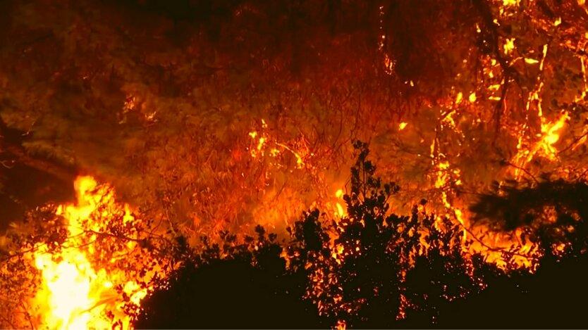 Лесные пожары в Турции 2021 года